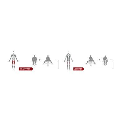 Приведение/отведение бедра Spirit Fitness DWS150-U2 Фото