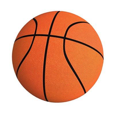 Баскетбольный щит для батутов Unix Supreme 10-16ft Фото